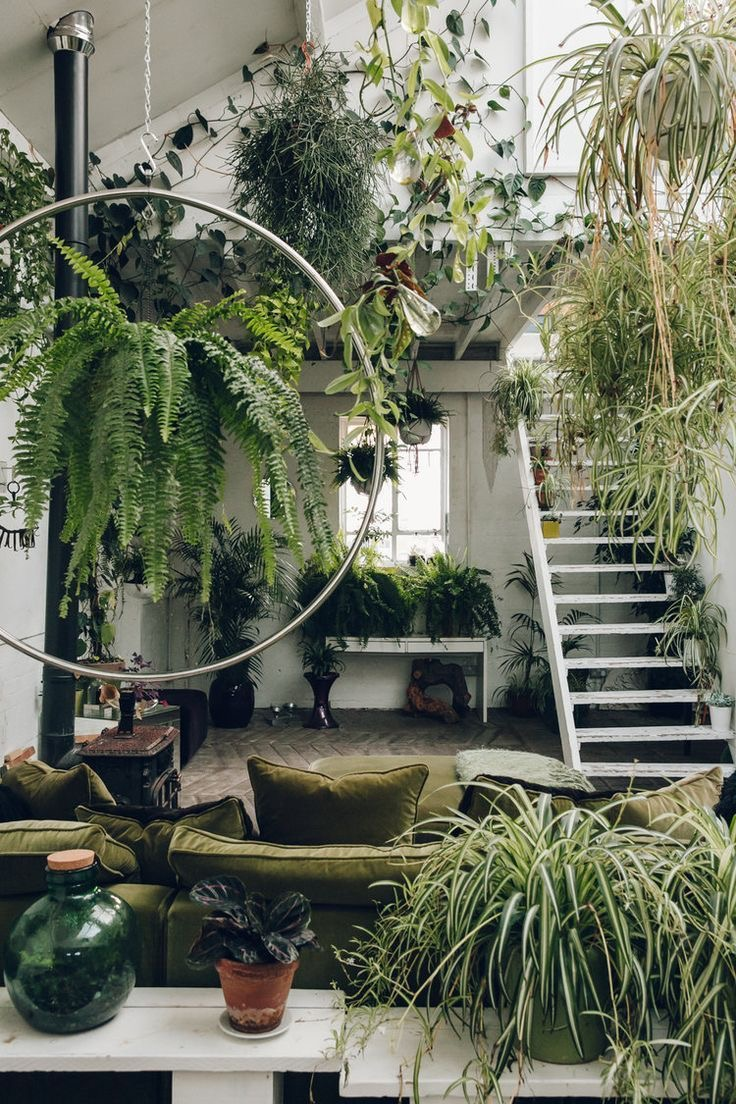 50+ BEAUTIFUL INDOOR PLANTS DESIGN IN YOUR INTERIOR HOME