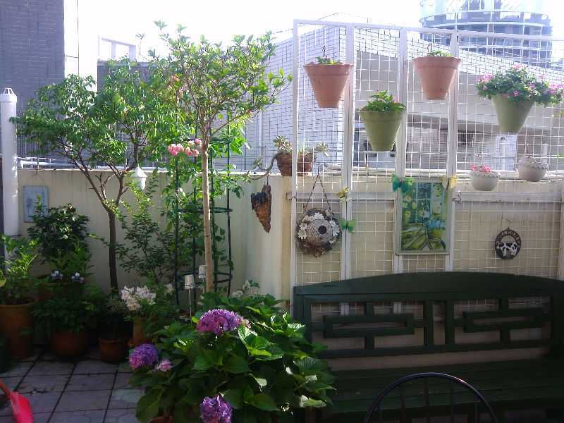 Balcony; Outdoor Decor; Balcony Decoration; Small Balcony; Balcony Apartmen; Terrace; Furniture; DIY; Warm Home; Sunshine Garden; Plant Decoration; Hammock; Storage; Recreation Area; Play Area; Room Decoration; Architecture; Balcony Railing; Balcony Inspiration; Living Room; Garden; Garden Decoration; Garden Design;Garden DIY